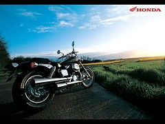 Honda VT 750 DC Black Widow 2000 - 5