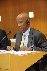 Landmine Convention Interssesionals