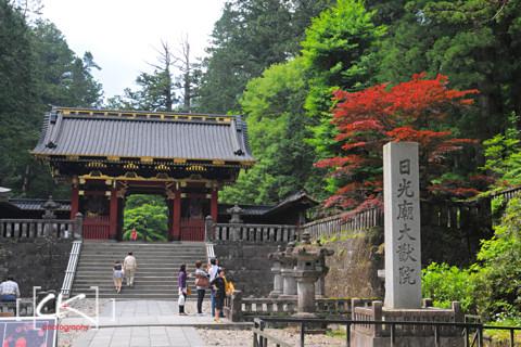 Japan_1293