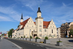 Coswig (Anhalt)