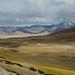 Landscape of lake Tso Kar, India 2016 by reurinkjan