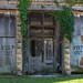 Boarded up door and windows by _patclancy56