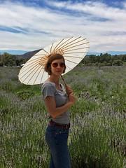 Becca in Lavender