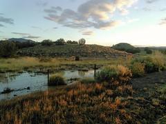 New Mexico heading towards Durango Co
