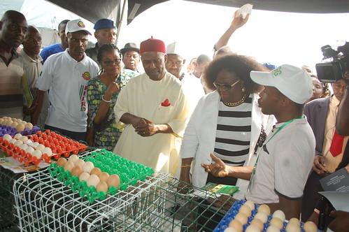 Eminent guests listening to Fikayo Oyewale (ACGG Nigeria) (Photo credit: ACGG Nigeria / Paul Ishaku)