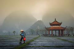 Bin Minh