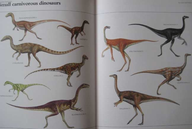 The Macmillan Illustrated Encyclopedia of DINOSAURS and Prehistoric Animals