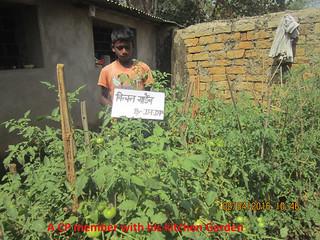 Proyecto Dalmadih (India) (3)