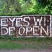 Eyes Wide Open by Wiebke