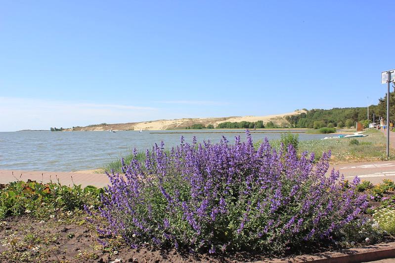 Widok na wydmę Parnidis