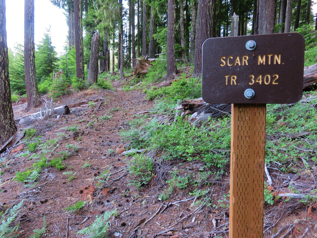 Scar Mountain Trail