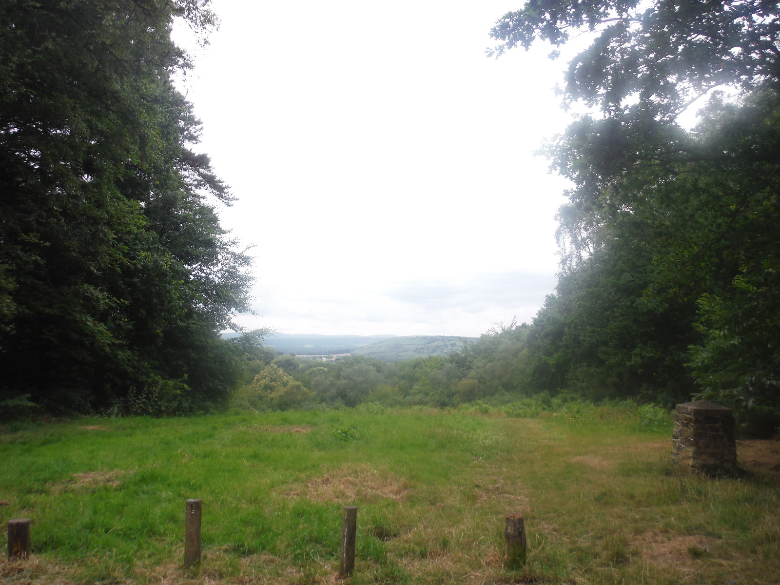 View from Marley Common NT Car Park SWC Walk 218 Haslemere to Midhurst (The Midhurst Way)