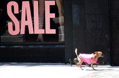 Hot Pink Sale