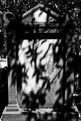 Cimitero acattolico di Roma (quartiere Testaccio)