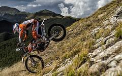 KTM FREERIDE 250 R 2014 - 21
