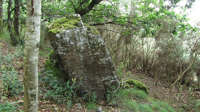 Signs of an outcrop off the track
