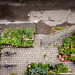 Small photo of Potager Urbain