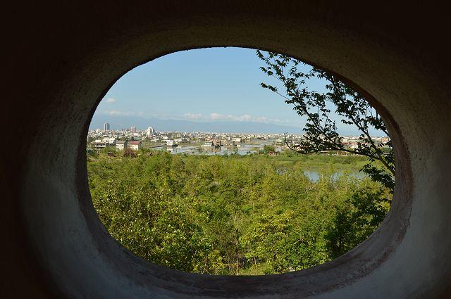 東山河生態綠舟47