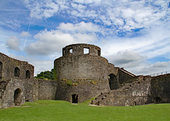 Dinefwr Castle 1