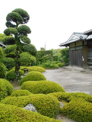 jp-chiran-jardin5 (2)