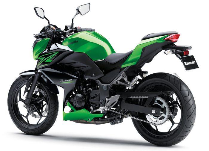 Kawasaki Z 300 2016 - 10