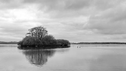 Insel im Dobersdorfer See