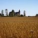 Catholic Church of Saints Cosmas and Damian lovely situated in the wheat fields of Slovakia by B℮n