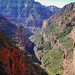 Small photo of Grand Canyon North Rim