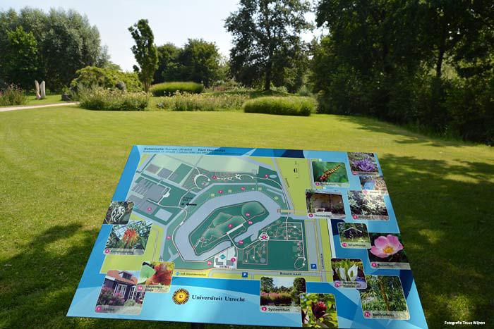 Utrecht-Botanische-Tuinen-3