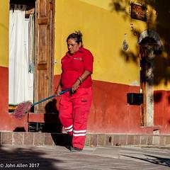 Bristling Red  || Guanajuato 2017