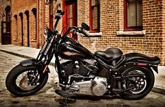 Harley-Davidson FLSTSB 1584 SOFTAIL CROSS BONES 2008 - 0