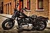 Harley-Davidson FLSTSB 1584 SOFTAIL CROSS BONES 2010 - 1