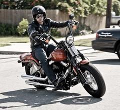 Harley-Davidson FLSTSB 1584 SOFTAIL CROSS BONES 2008 - 15