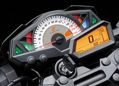 Kawasaki Z 300 2016 - 0