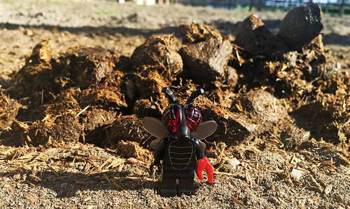 LEGO Collectible Minifigures Series 14 : Fly Monster