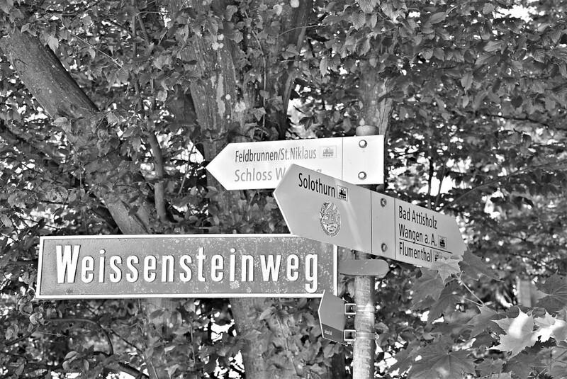 Signpost 16.05.2017