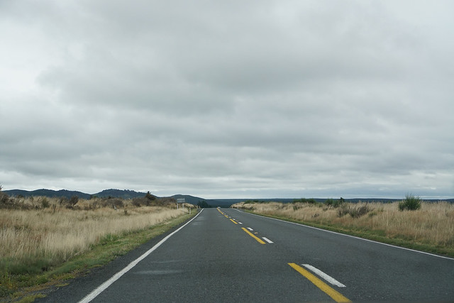 Passing Through the Waikato