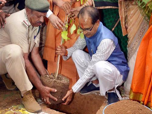 2 जुलाई को नर्मदा के किनारे वृक्षारोपण करते म.प्र. के मुख्यमंत्री शिवराज सिंह चौहान