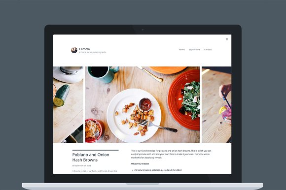 Camera v1.1.8 – WordPress Theme