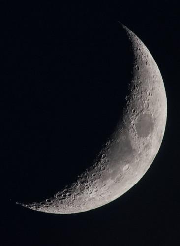 Crescent Moon DSC_6560-2