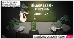 Hüllők - a Bilderberg Csoport