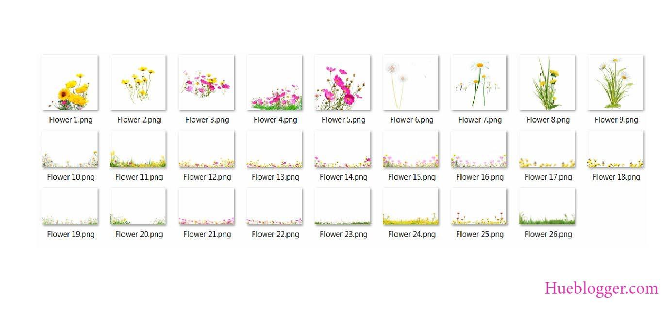 Bộ 25 PNG hoa cỏ thiên nhiên