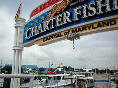 Rod 'N' Reel Marina in Chesapeake Beach, Maryland Pic 1