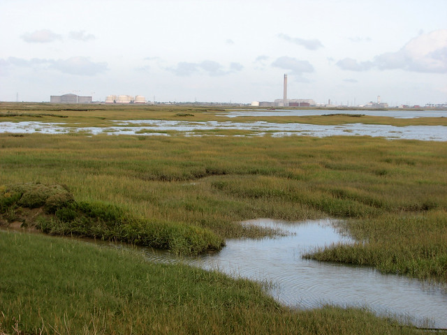 Stoke Saltings from the Isle of Grain