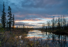 Finnish Lapland at dusk