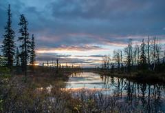 Finnish Lapland at dusk