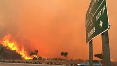 Placerita Canyon Fire
