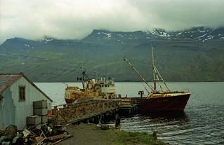 Fiskebåt på østkysten