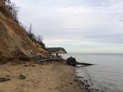 Calvert Cliffs shore
