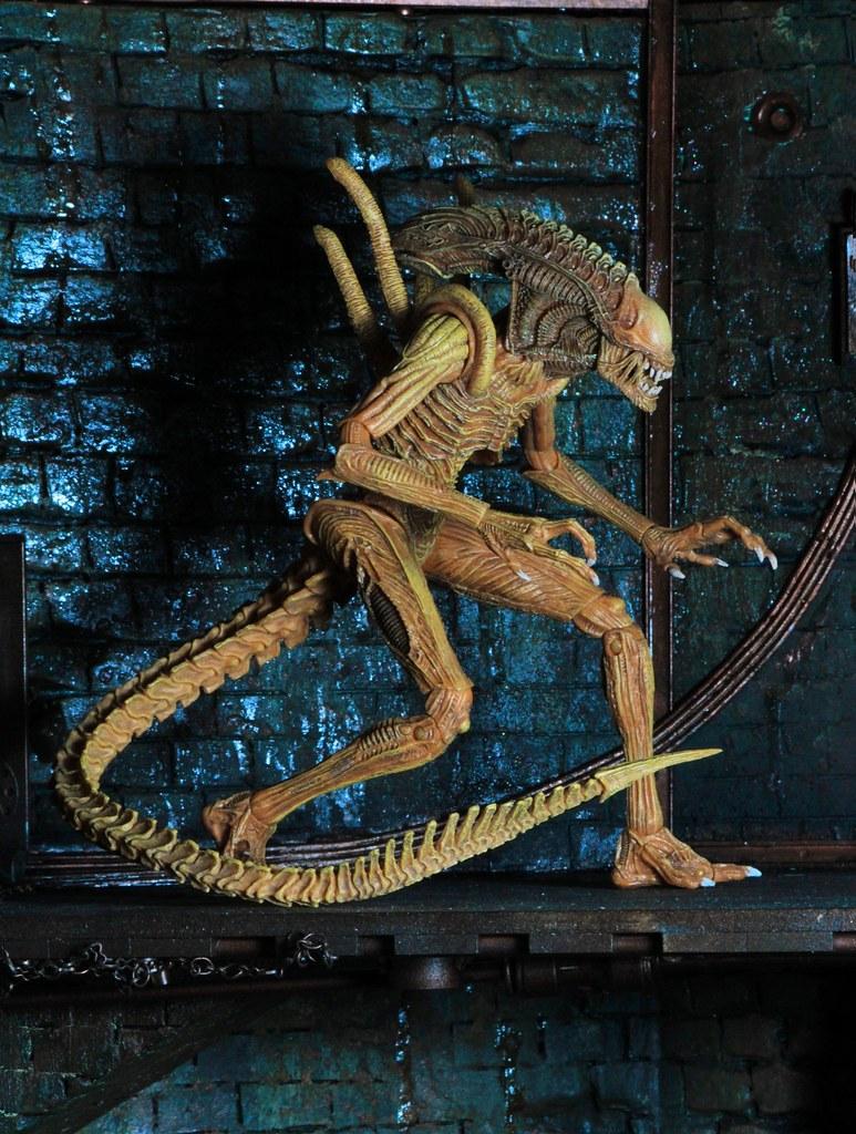 2017 SDCC 限定!!NECA【下水道變種戰士異形】Sewer Mutation Warrior Alien